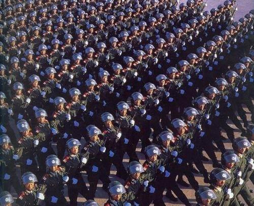 反恐特战队之猎影里的特警们毕业于什么大学